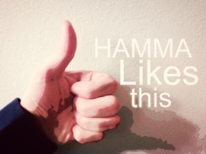 Social Rockstars Plan Hammarica PR